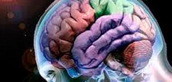 El otro día, el padre de uno de mis pacientes me preguntaba ¿qué es la neuropsicología?