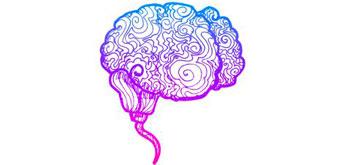 El cerebro, ese gran desconocido
